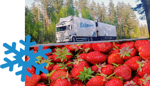 frakt-jordgubbar-helsingborg-malardalen-kyl-transport-ice-boka-frakt